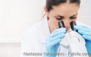 Hepatitis, Parkinson, Krebszellen untersuchen