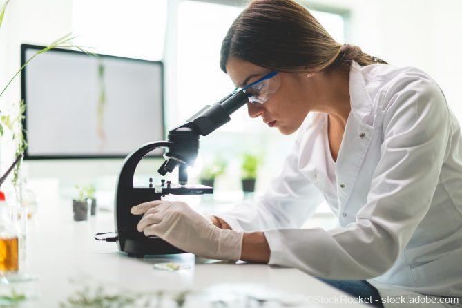 Warum wachsen Glioblastome so schnell?