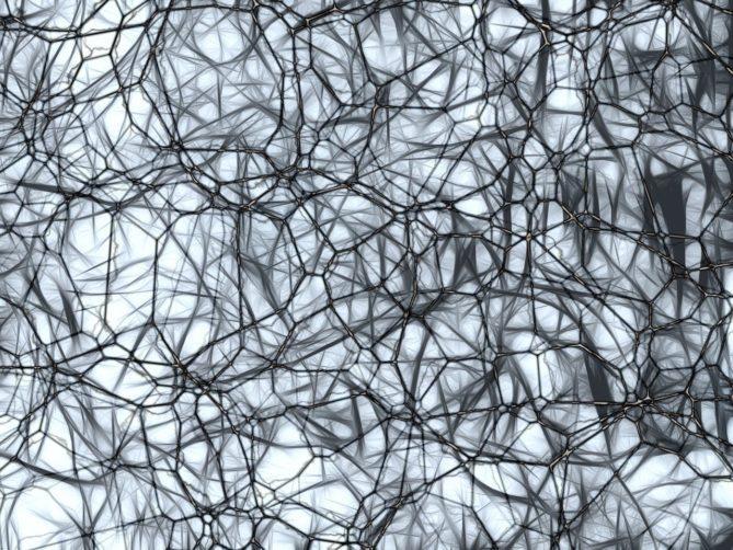 neurons, brain cells, nachahmnung