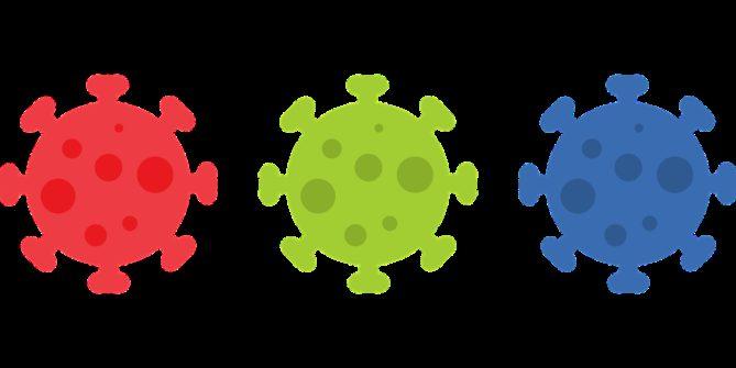 virus, coronavirus, corona