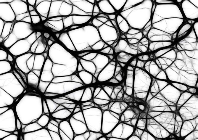 Gehirntumoren