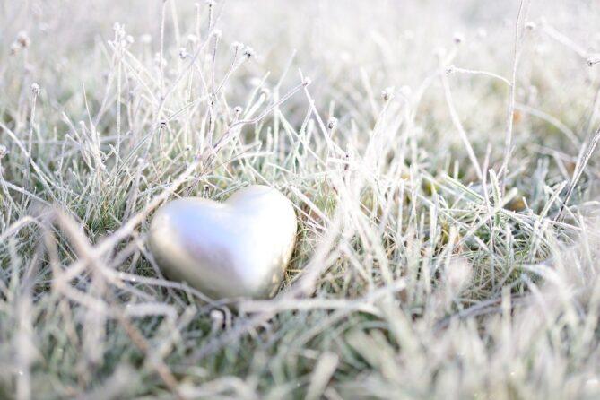 CBD gegen Herzerkrankungen