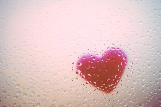 TAVI - Herzmuskel