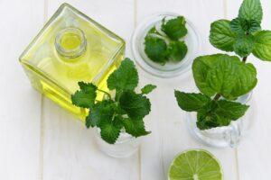 Wirkung von ätherischen Ölen