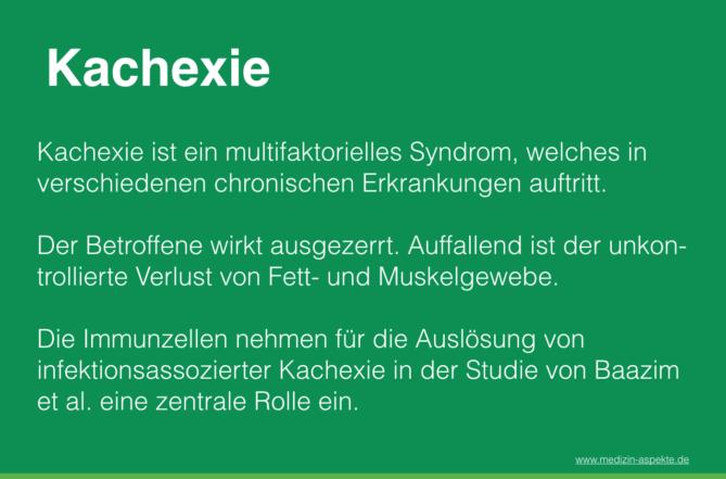 Kachexie