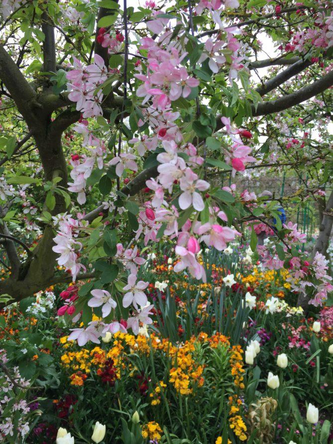 In seinem Garten ließ sich Claude Monet inspirieren.