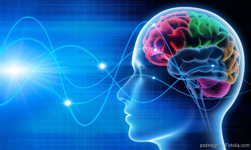 Hirntod, ADHS, Gehirn, Neurologie, Neuro, Nerven