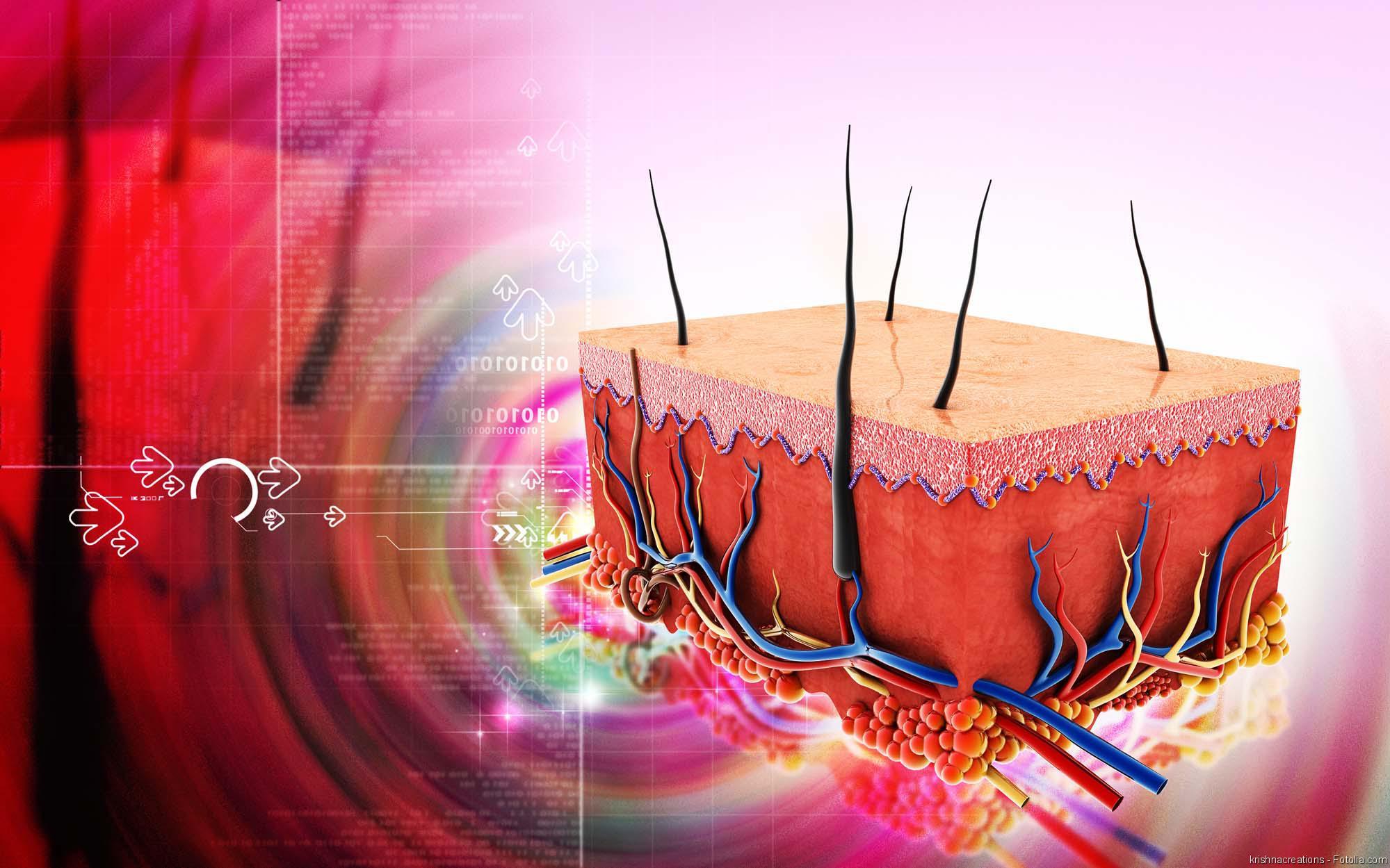 Erhöhter östrogenspiegel