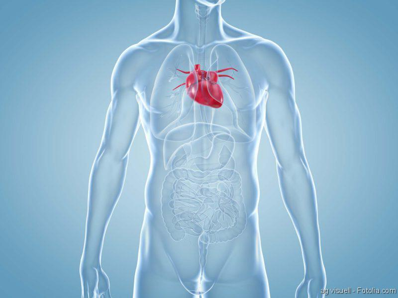 Herz-Bildgebung, Herzerkrankung, Schlaganfall