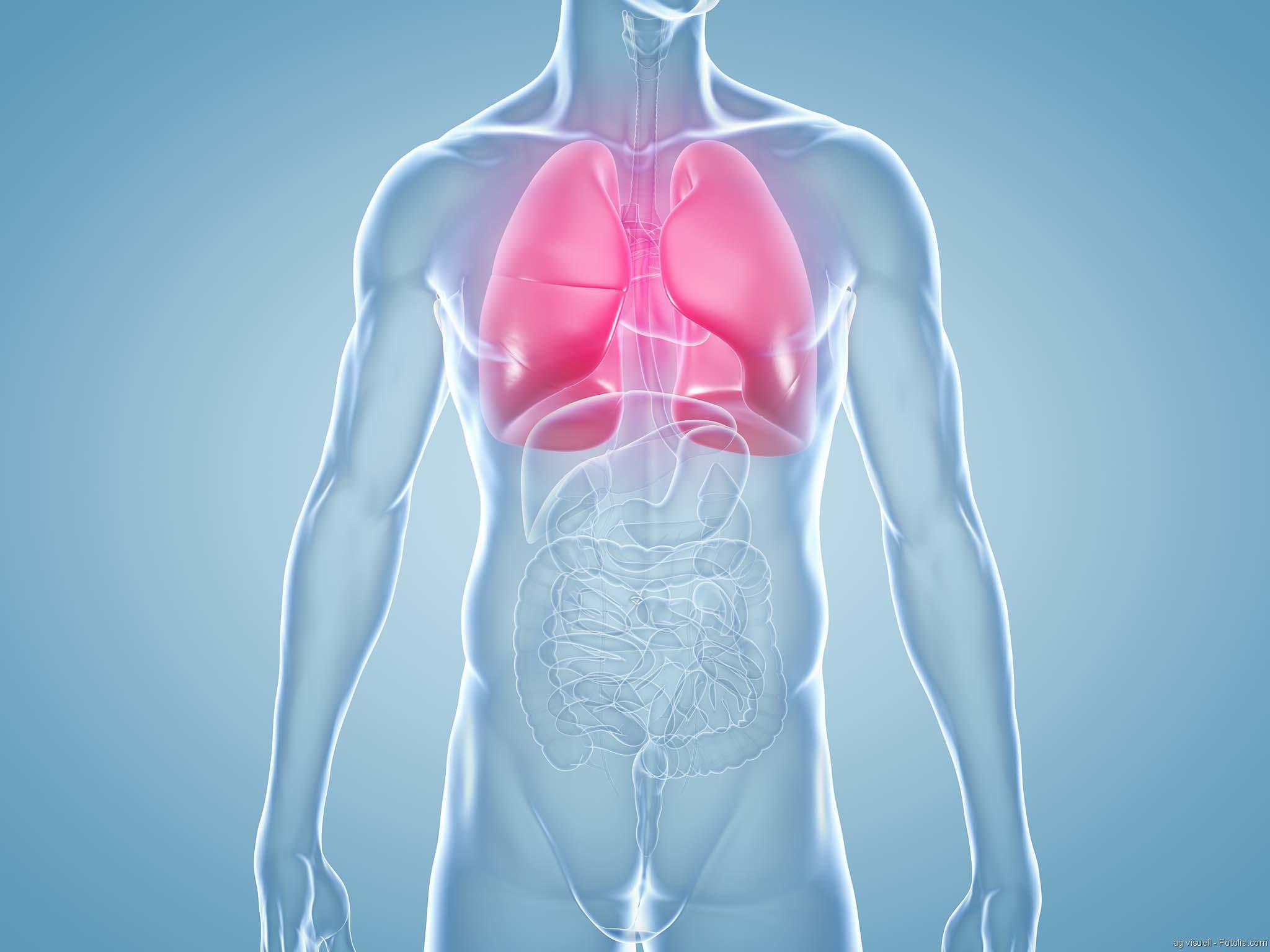Organmangel, Infektionen bei Organempfängern, Lungenkrebs