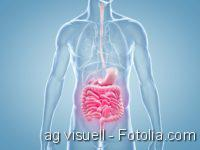 Darmerkrankungen, GastroTrials, Darm