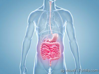 Darm, Darmbakterien, Darmkrebs, Darm, Darmerkrankungen, GastroTrials, DarmReizdarm,