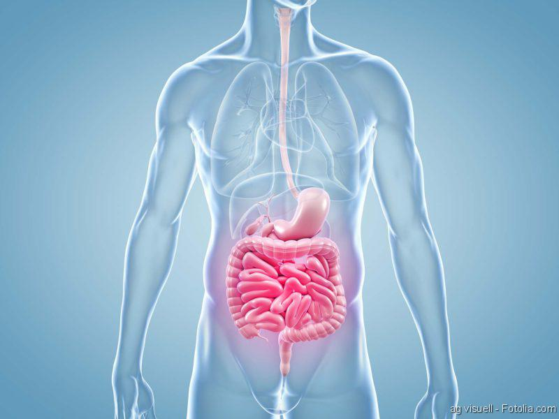 Reflux, Darm, Darmbakterien, Darmkrebs, Darm, Darmerkrankungen, GastroTrials, DarmReizdarm,