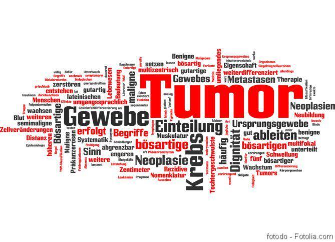 Oncothermie, Metastasierung, DGHO-Roadmap, Metastasen, Bindegewebszelle, Krebs, Tumor