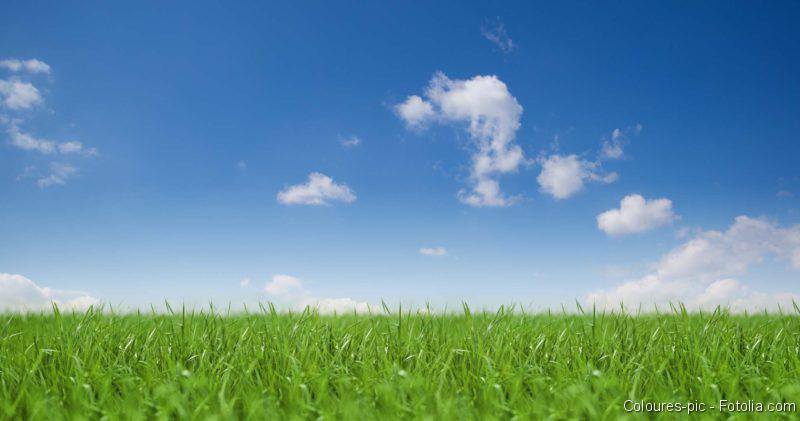 Tretroller, Feinstaub, Luftreiniger: Luftverschmutzung